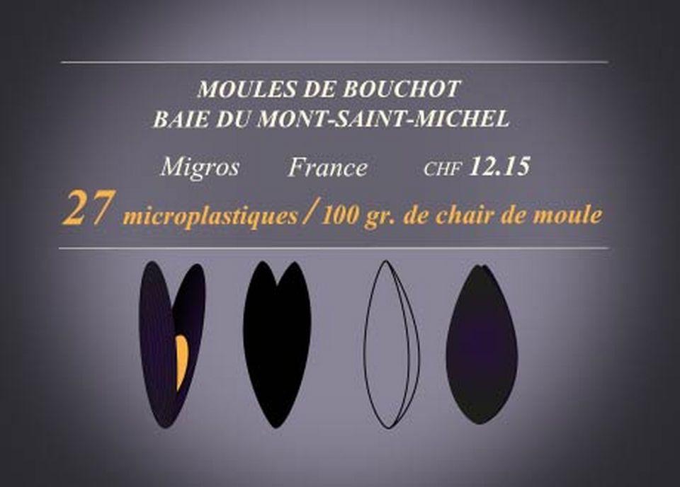 Moules de Bouchot [RTS]