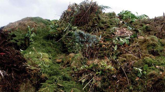 Déchets organiques à la compostière de Lavigny. [ecorecyclage.ch]