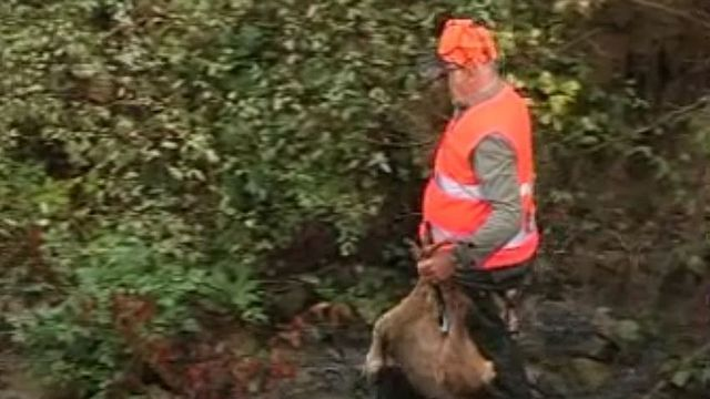 Des habits fluorescents pour plus de sécurité à la chasse.