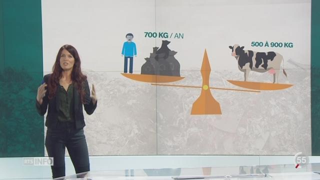Climat - Tri des déchets: les explications de Julie Evard [RTS]