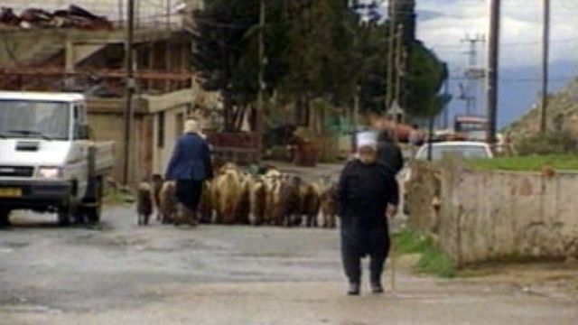 Reportage en 1991 sur les Druzes du Golan, annexé par Israël. [RTS]