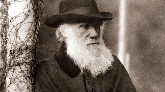 Portrait de Charles Darwin (1809-1882). [Bianchetti/Leemage  - AFP]