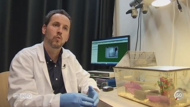 Des chercheurs de l'Université de Genève se penchent sur la mémoire [RTS]