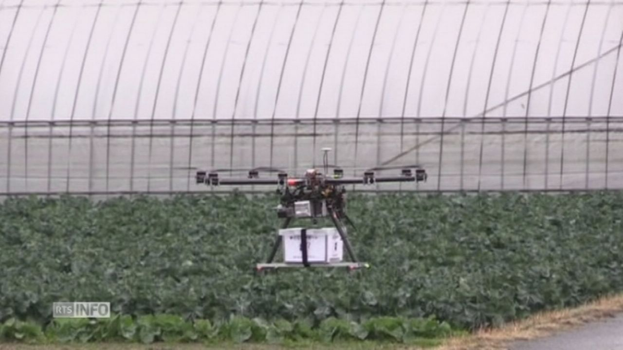 Premier test de drone livreur au Japon [RTS]