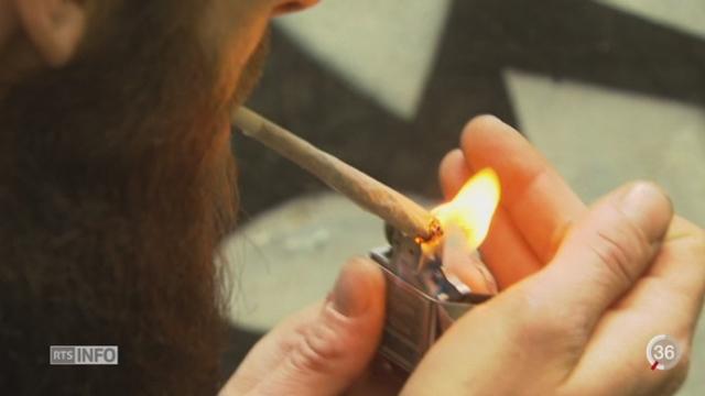 Berne souhaite une évaluation de la vente du cannabis en pharmacie [RTS]