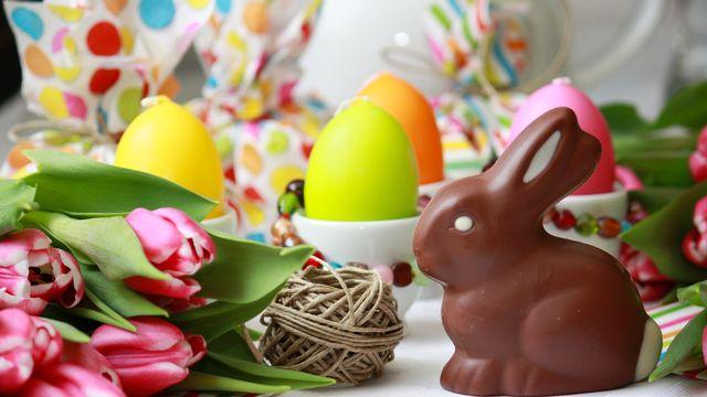 Lapin et oeufs de Pâques [ChristArt - fotolia]