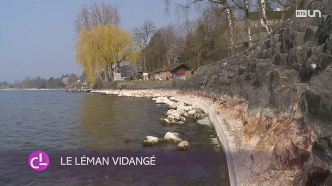 Le Léman a été vidangé pour permettre les travaux d'entretien le long des rives [RTS]