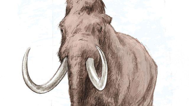 Représentation d'artiste du mammouth. ikonaut Jurassica [ikonaut - Jurassica]