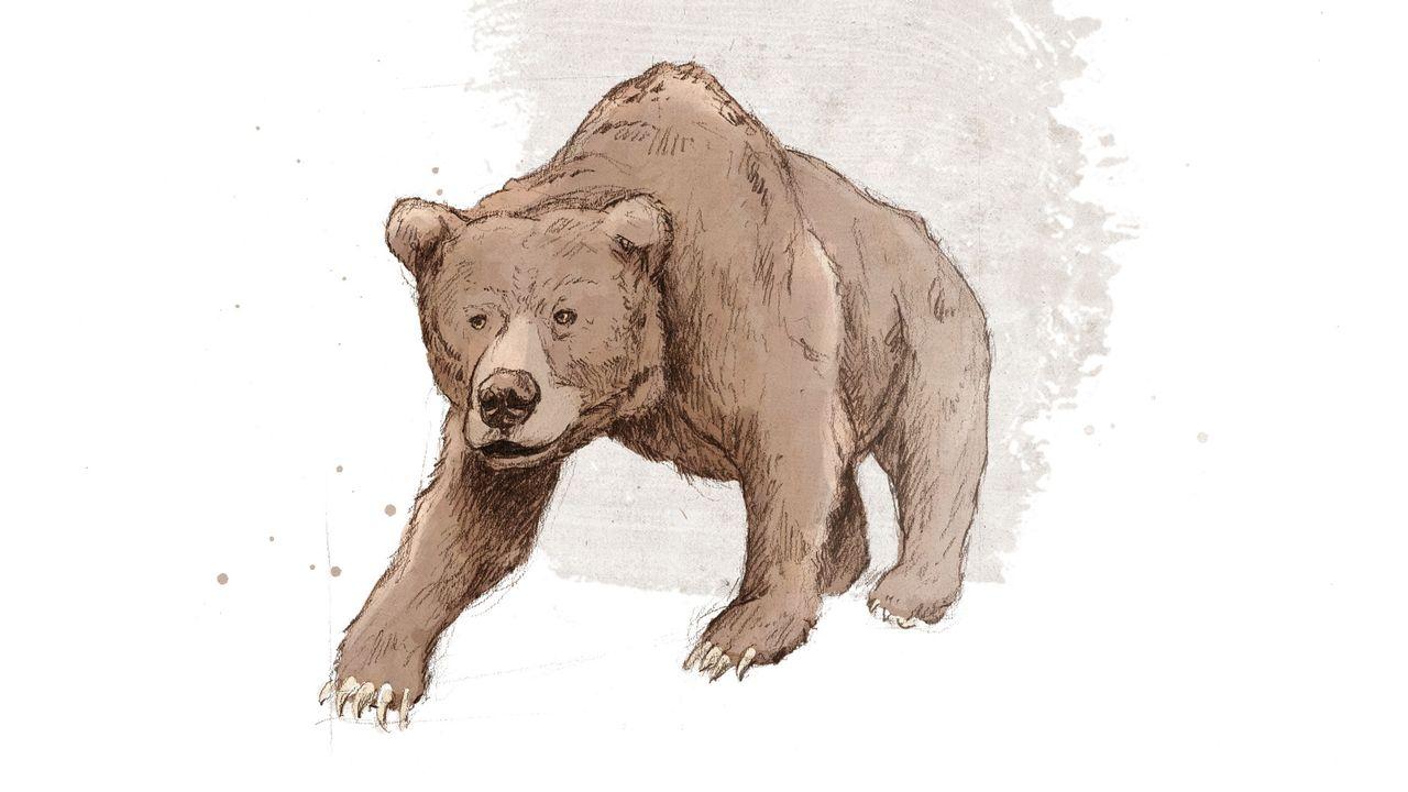 Représentation d'artiste de l'ours des cavernes. ikonaut Jurassica [ikonaut - Jurassica]