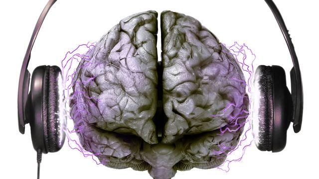 Les relations entre cerveau et musique forment un sujet complexe. [cobus du plessis - Fotolia]