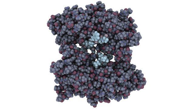 Illustration de la mutation du gène BRCA1. molekuul.be Fotolia [molekuul.be - Fotolia]