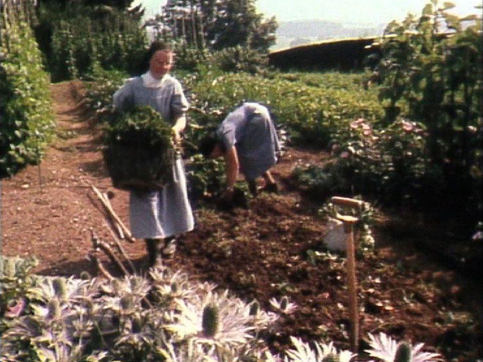 Religieuses du Carmel du Pâquier au jardin, 1982. [RTS]