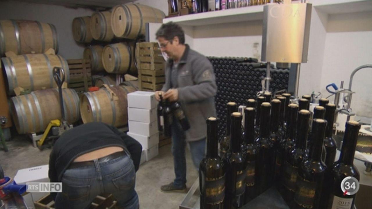 Les vins suisses auront désormais l'appellation d'origine contrôlée (AOP) [RTS]