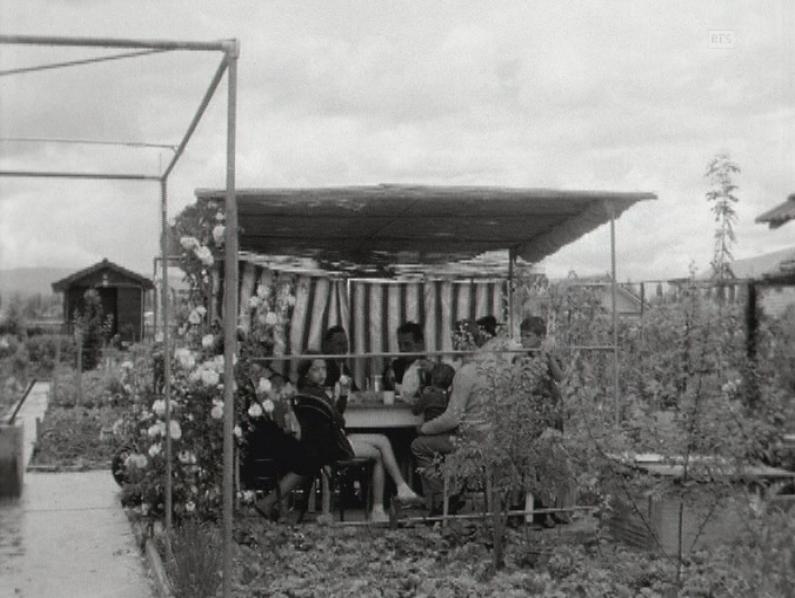 Jardins familiaux