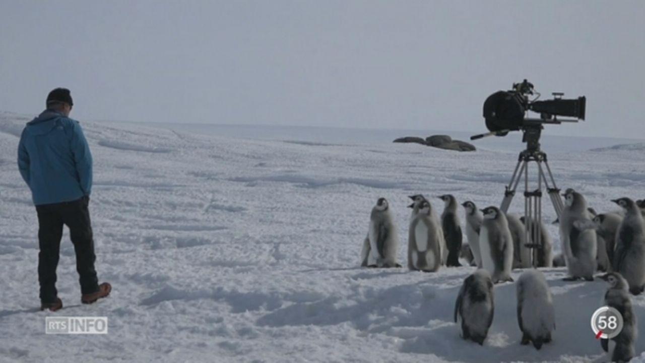Une exposition de Luc Jacquet permet de plonger au cœur de l'Antarctique [RTS]