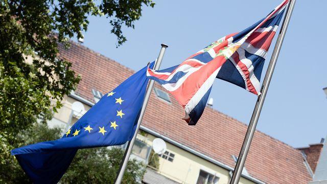 """Les partisans du """"Remain"""" ne s'avouent pas vaincus. Certains demandent un nouveau scrutin sur le Brexit. [Georg Hochmuth - APA]"""