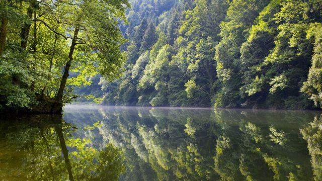 Surmortalité des poissons, prolifération d'algues, le Doubs est malade. [Martin Ruetschi - Keystone]
