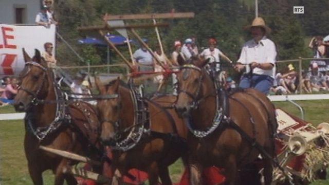 Au marché-concours de Saignelegier en 1993. [RTS]