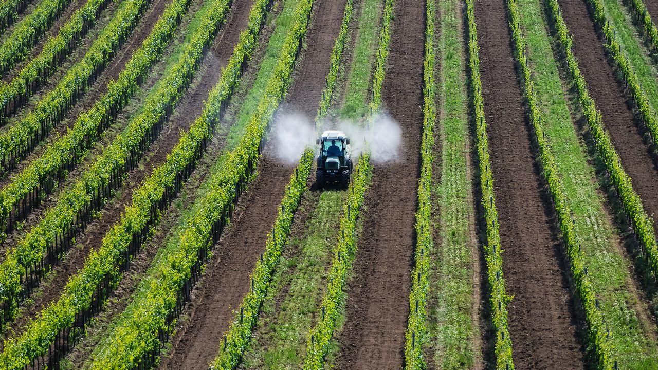 Tracteur pulvérisant du pesticide. [Ewald Fröch - Fotolia]