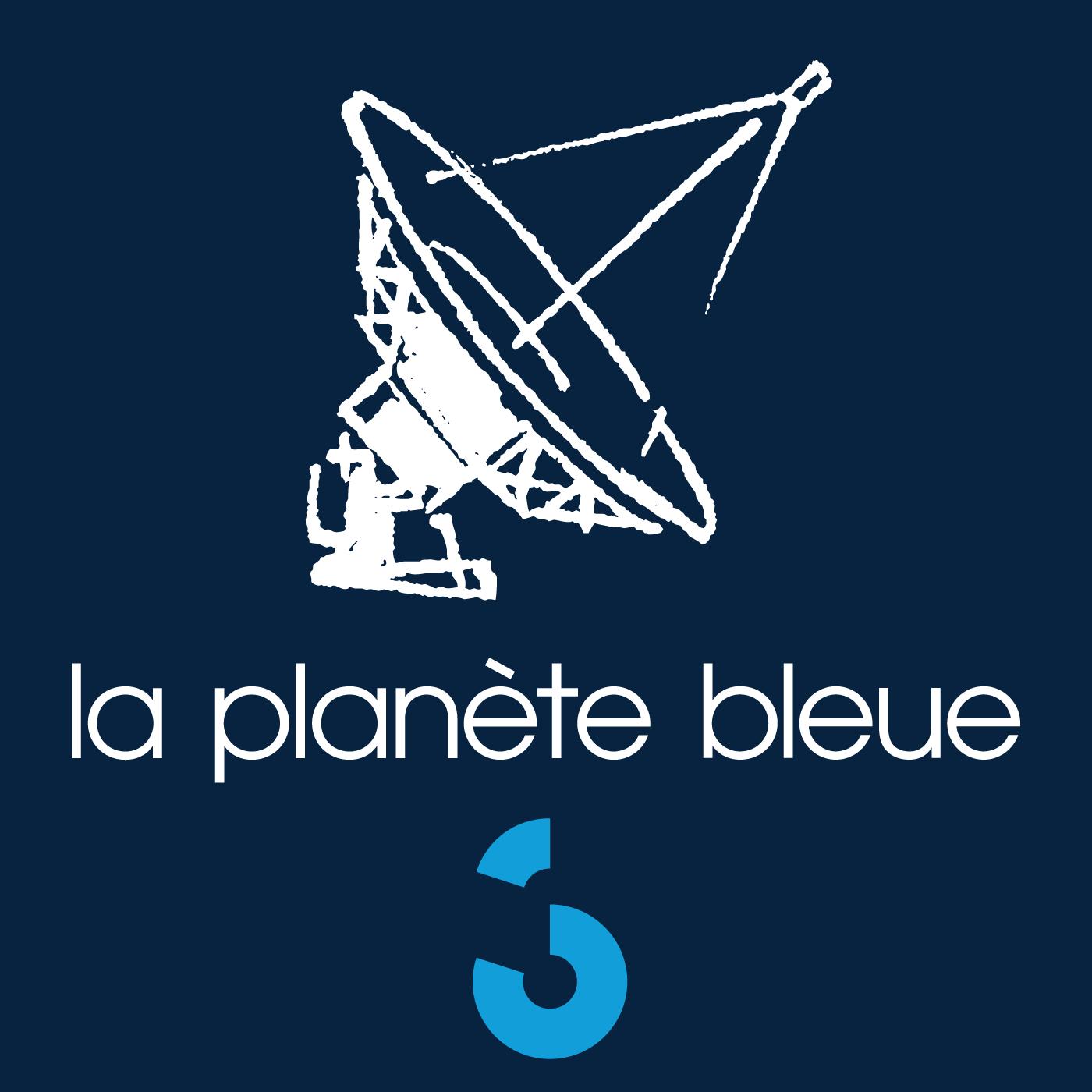 La plan te bleue rts podcast for Plante bleue