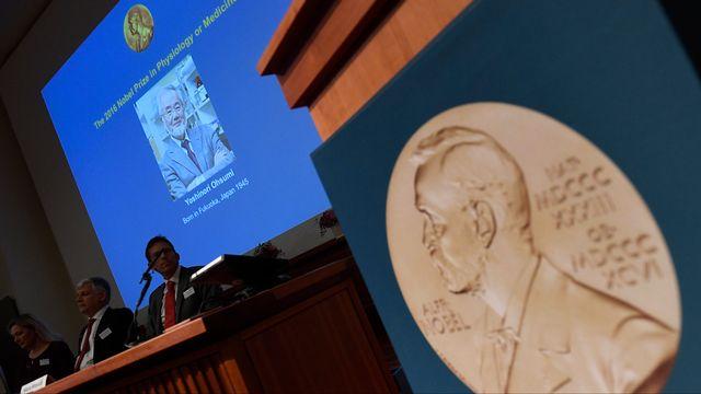 Le Nobel de médecine 2016 a été remis à un biologiste japonais. [JONATHAN NACKSTRAND - AFP]