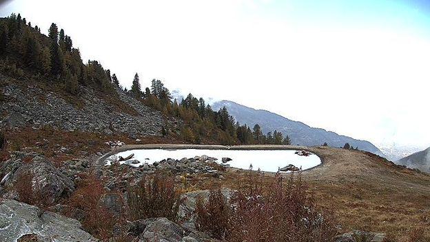 Un étang aménagé en vue de recherches sur le climat