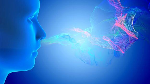 Le souvenir d'une odeur