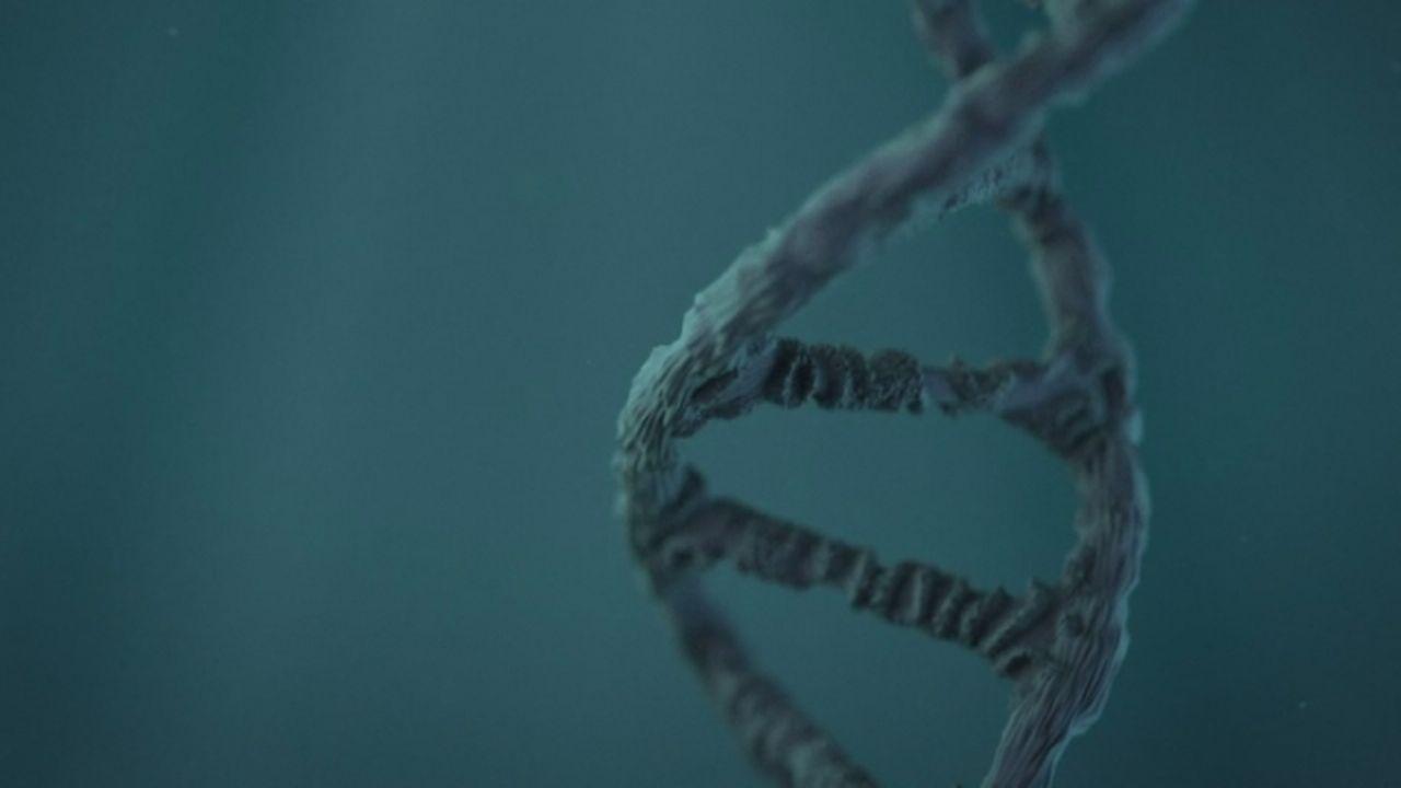 Comment décode-t-on le génome? [RTS]