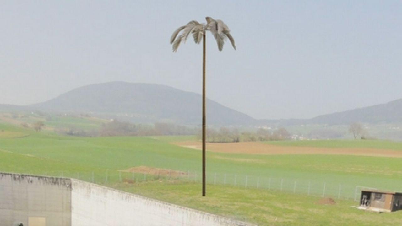 Une image de synthèse simulant la hauteur du palmier, juste à côté de la cour de la prison de Gorgier. [RTS]