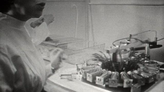 Test sur des souris en 1965. [RTS]