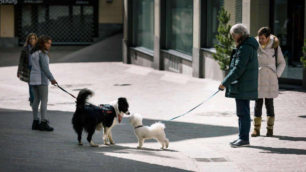 Les mesures introduites en 2008 après plusieurs attaques sanglantes commises par des chiens. [Keystone]