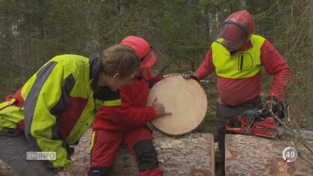 Le secteur du bois veut se spécialiser dans le bois de haute qualité [RTS]