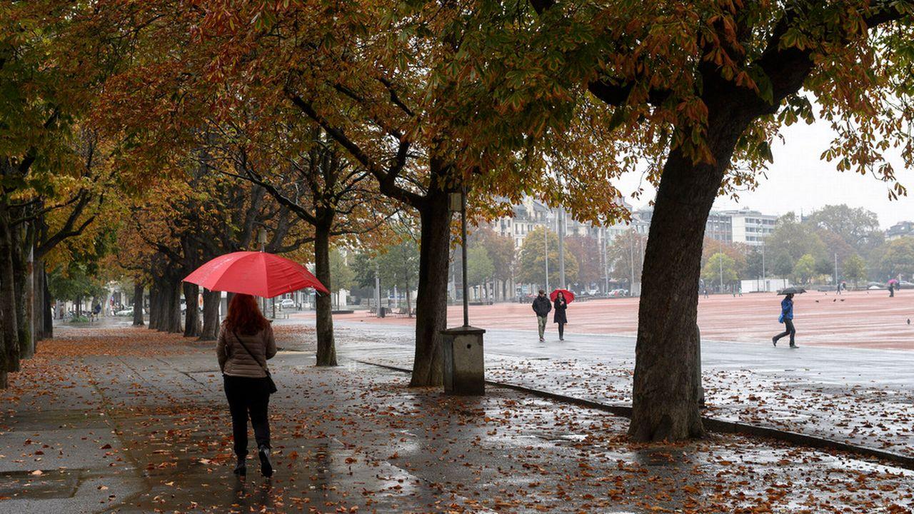 Sous des marronniers de la plaine de Plainpalais, le 23 octobre 2016, à Genève. [Martial Trezzini - Keystone]
