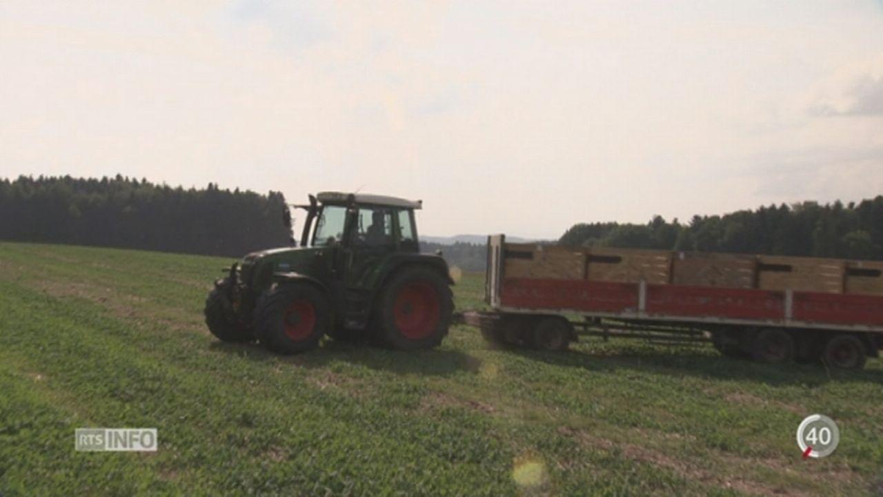 L'agriculture suisse restera protégée de toute modification génétique jusqu'à 2021 [RTS]