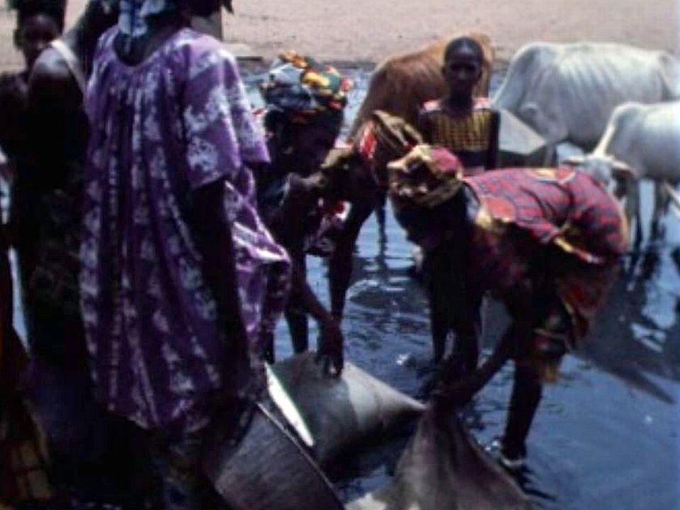 Plus de 10 millions de personnes victimes de la sécheresse. [RTS]