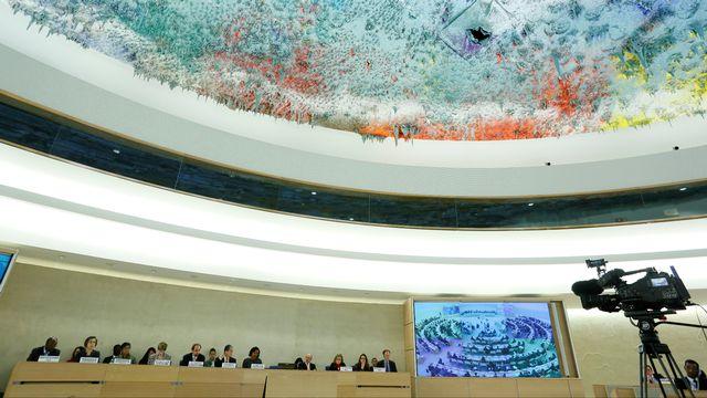Vue générale sur le Conseil des droits de l'Homme réuni en session spéciale sur le Soudan du Sud à Genève, le 14 décembre. [Pierre Albouy - Reuters]