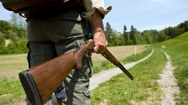 Lancée par le PDC du Haut-Valais, l'initiative veut que la régulation des grands prédateurs se fasse comme celle du gibier. [Ennio Leanza - Keystone]