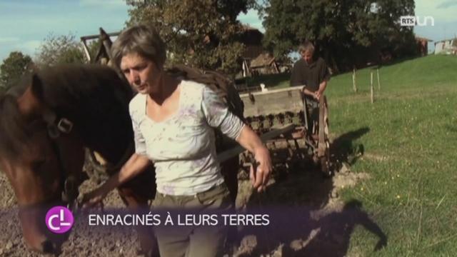 Des cultivateurs bio du Jura et du Jura bernois ont décidé de s'éloigner de la production mondialisée [RTS]
