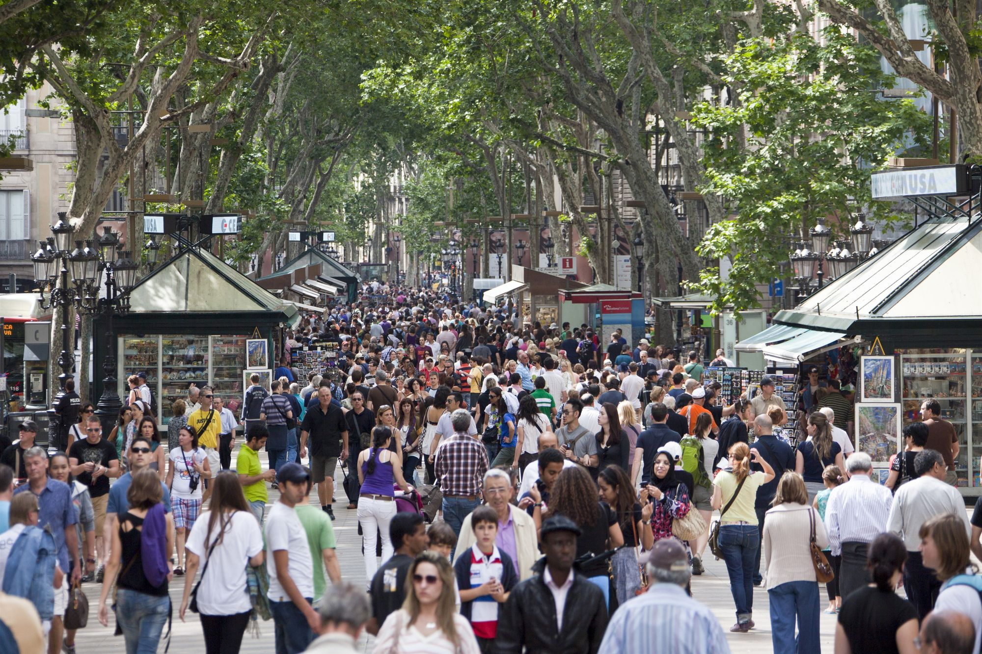 Attentat de Barcelone : 13 morts et 50 blessés
