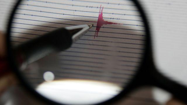 Blick auf das Internet-Seismogramm des Landesamts fuer Geologie in Freiburg am Donnerstag, 22.Maerz 2007, das den Ausschlag eines leichten Erdbebens vom Mittwochabend in Basel dokumentiert. Mehr als drei Monate nach dem Abbruch des umstrittenen Erdwaermeprojekts in Basel hat erneut die Erde in der Naehe des Bohrlochs gebebt. Der Schweizerische Erdbebendienst an der ETH Zuerich registrierte um 17.45 Uhr ein Beben der Staerke 2,9. Das Epizentrum befand sich in unmittelbarer Naehe des Bohrlochs in Kleinhueningen. Zuletzt war am 2. Februar ein Beben aehnlicher Staerke ausgeloest worden. Das umstrittene Projekt ist inzwischen auf Eis gelegt worden.(AP Photo/Winfried Rothermel)--- View of a seismogram of the earth-quake - center in Freiburg, southern Germany, on Thursday, March 22, 2007. It shows the earthquake with an amplitude of 2,9 from Wednesday, March 21, 2007, in Basel, Switzerland. (AP Photo/Winfried Rothermel)  [Winfried Rothermel - AP Photo]