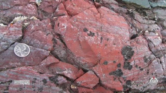 La revue Nature annonce la découverte de fossiles de bactéries âgés de près de quatre milliards d'années [RTS]