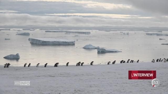 Antarctique: trois mois de recherches pour 55 scientifiques [RTS]