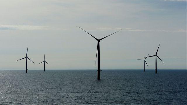 Une île artificielle entourée d'éoliennes pourrait voir le jour en Mer du Nord. [Nikolaj Skydsgaard - Reuters]