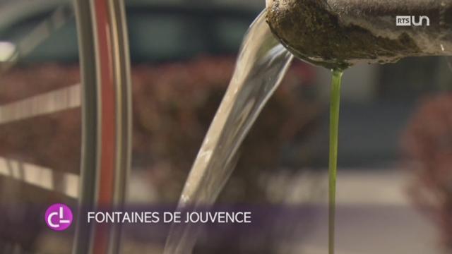 FR: les fontaines de Vully sont décorées pour Pâques [RTS]