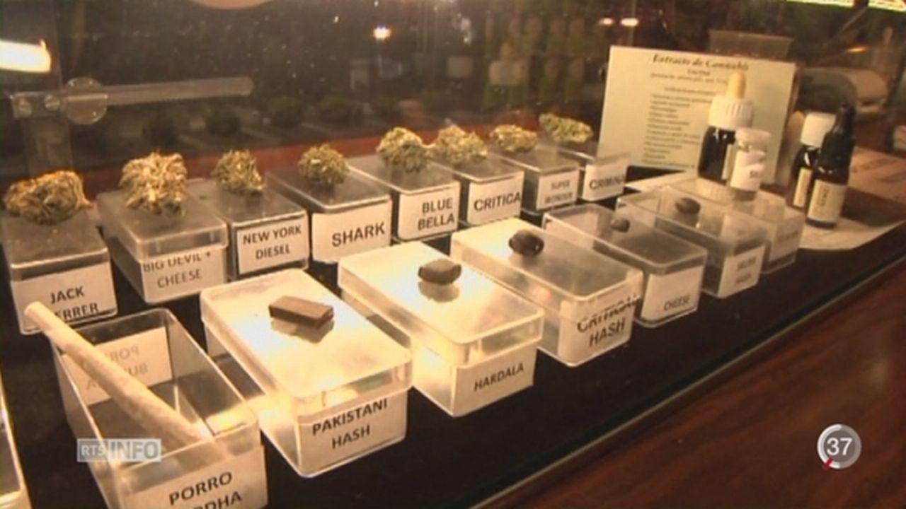 Les Verts proposent de taxer le cannabis au même titre que l'alcool [RTS]