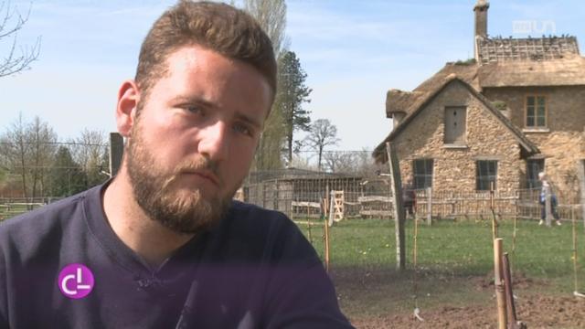 Un apprenti horticulteur paysagiste vaudois vit un conte for Horticulteur paysagiste
