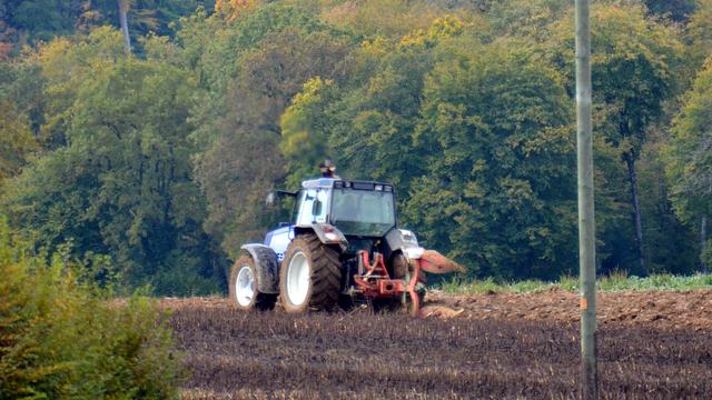 L'initiative veut renforcer l'approvisionnement avec des denrées issues de l'agriculture suisse. [Gaël Klein - RTS]