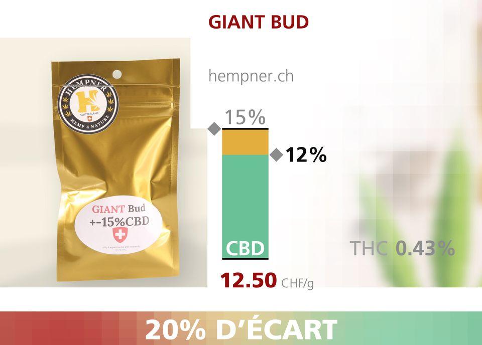 ABE WEB cannabis 00004 [RTS]