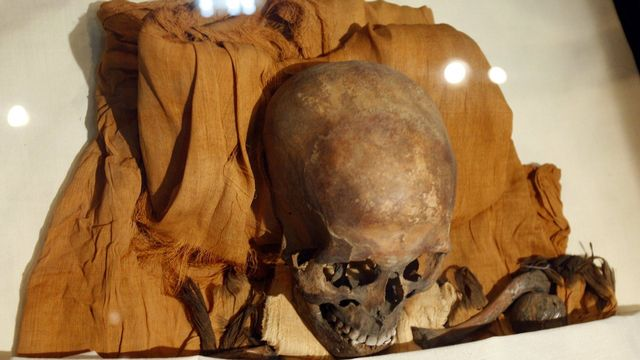 """Le """"roi hérétique"""", l'une des momies égyptiennes dont l'ADN a été décodé par des chercheurs. [Khaled El-Fiqi - Keystone]"""