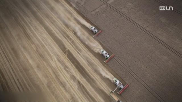 L'utilisation du glyphosate dans l'agriculture [RTS]